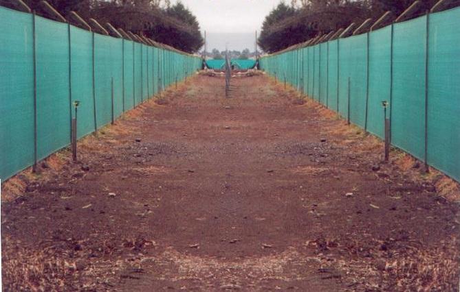 Cercados para jardin plasticos y de madera holidays oo for Aki vallas jardin