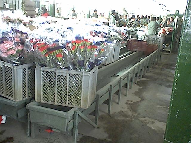 Contenedores cajones cajas plegables shelters refugios - Contenedores metalicos apilables ...