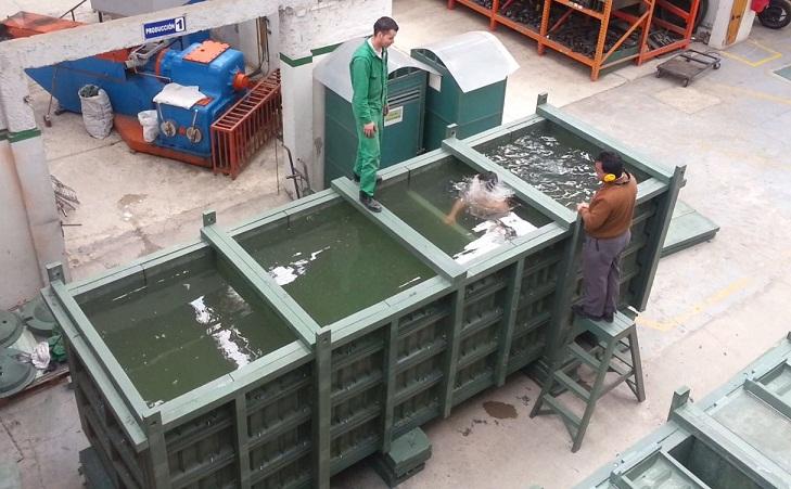 Pisc colas acuicultura tecnificada piscicultura pesca for Criadero de cachamas en tanques