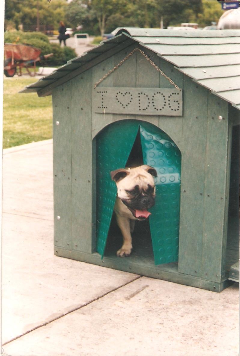 33 casas perros mascotas perreras pritorias corrales - Como hacer una casa para perro grande ...