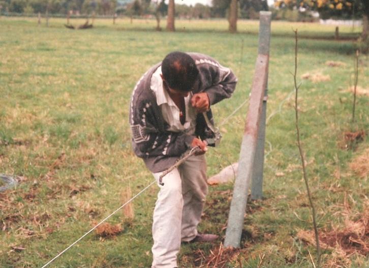 Cercas eléctricas en ganadería