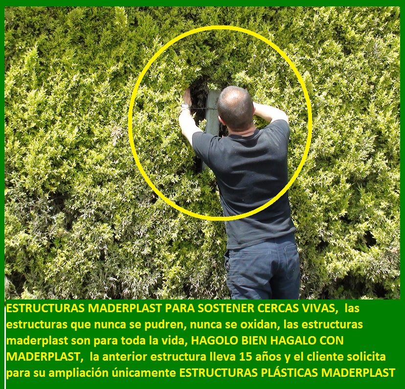 52 Fachadas flotantes Pérgolas Terrazas verdes vivas Miradores 0 0 ...