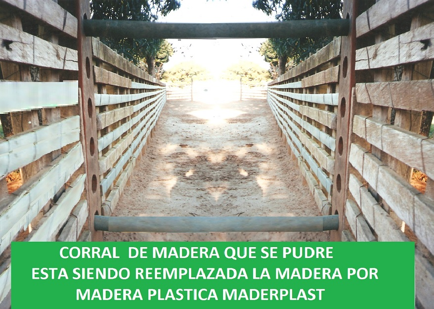 corral de madera plástica corrales wpc corrales de plastimadera corrales corralejas establos pesebreras madera o plástico maderplast maderas sintética maderplas wpc pvc pp pe pehd pebd 005 corral de madera plástica corrales wpc corrales de plastimadera corrales corralejas establos pesebreras madera o plástico maderplast maderas sintética maderplas wpc pvc pp pe pehd pebd 005