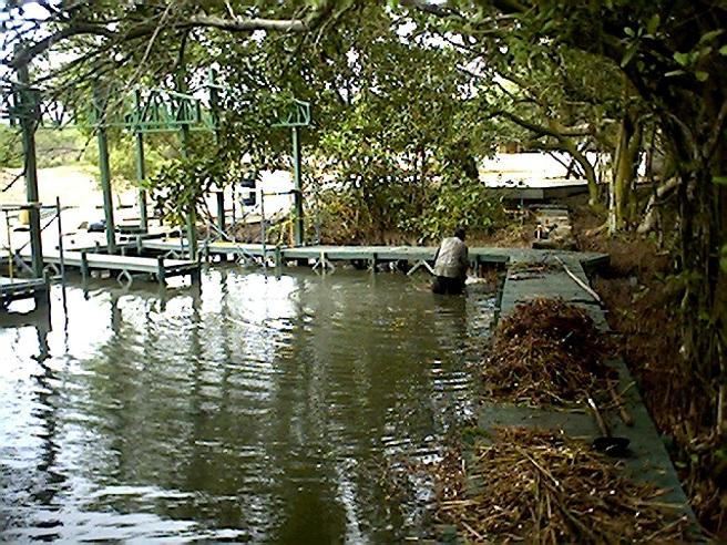 48 pisc colas acuicultura tecnificada piscicultura pesca for Jaulas flotantes para piscicultura