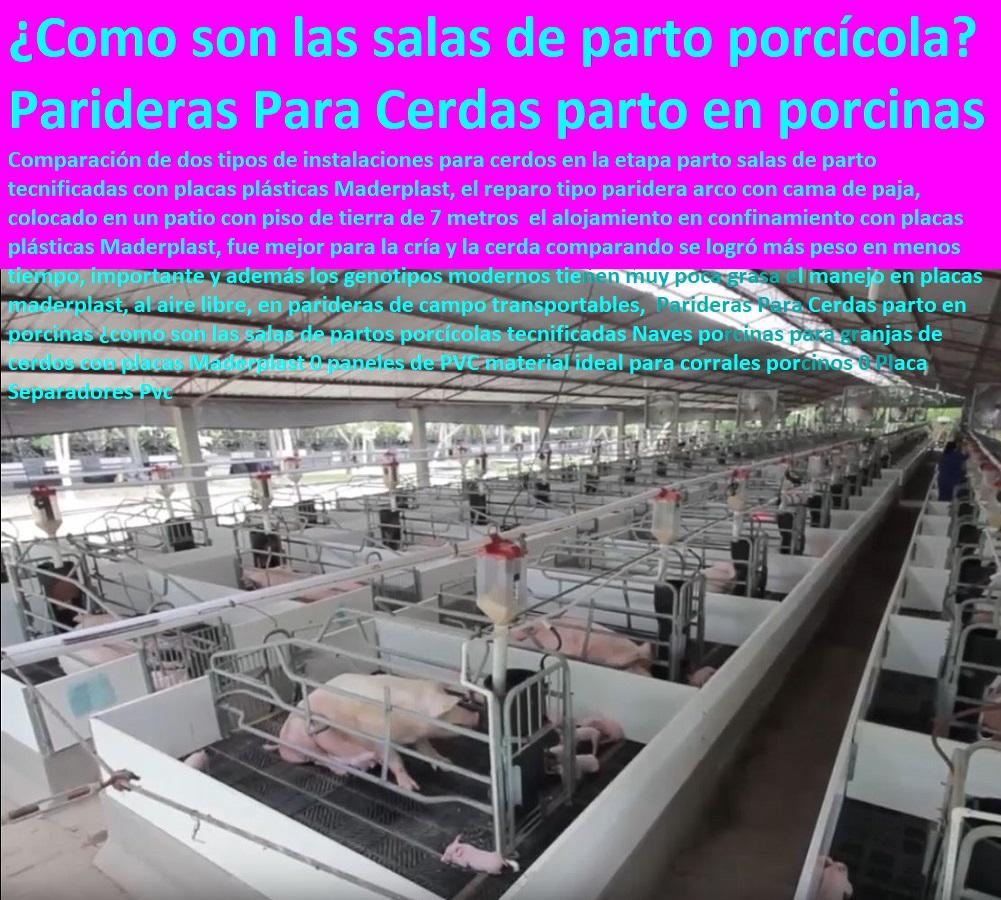 Diseño de porquerizas Maderplast en acero plástico inoxidables, no se pelan, no se corroen, no se pudren, no se deterioran no pierden su color, no se la comen los animales, En la actualidad la producción de cerdos está basada en la adecuada instalación Maderplast, Además, la producción porcina es una actividad que se caracteriza por generar al 2%, con el objetivo de dirigir el agua a unos tanques plásticos Maderplast de 1100 Lt de capacidad. Para los corrales de gestación, desarrollo y engorde y el corral de Maderplast,